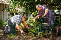 older man in checked shirt on his knees digging in the garden with older female in purple dress leaning on a walker directing the digging
